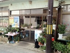 Kumaki Flower Shop